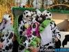 carnavalterapel9feb2013hm_252