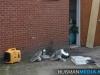 014-hennepkwekerij-ontmanteld-beneluxlaan-16-10-12