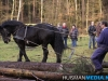 TrekpaardenSellingen_17dec2011_035