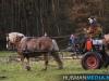 TrekpaardenSellingen_17dec2011_037