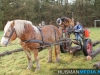 TrekpaardenSellingen_17dec2011_039