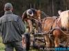 TrekpaardenSellingen_17dec2011_040