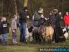 TrekpaardenSellingen_17dec2011_044