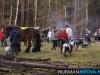TrekpaardenSellingen_17dec2011_051