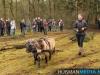 TrekpaardenSellingen_17dec2011_067