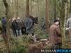 TrekpaardenSellingen_17dec2011_073