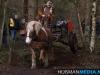 TrekpaardenSellingen_17dec2011_080