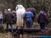 TrekpaardenSellingen_17dec2011_094